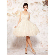 Informal Casual Straps A-Line Organza Short Beach Wedding Dresses