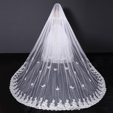 1 Layer Cathedral-Length Tulle with Embroidery White Wedding Veils