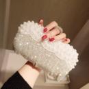 Beading Wedding Party Evening Handbags/ Purses/ Clutches